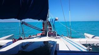 An Excellent Foredeck Hand!